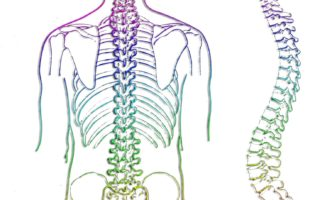 Osteopathy for Slipped or Bulging Discs
